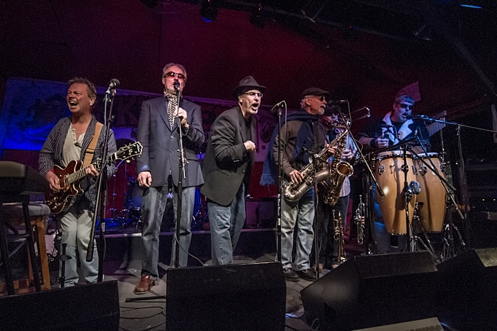 Blues Business with 5 piece Horns Swinging the Skipperdome