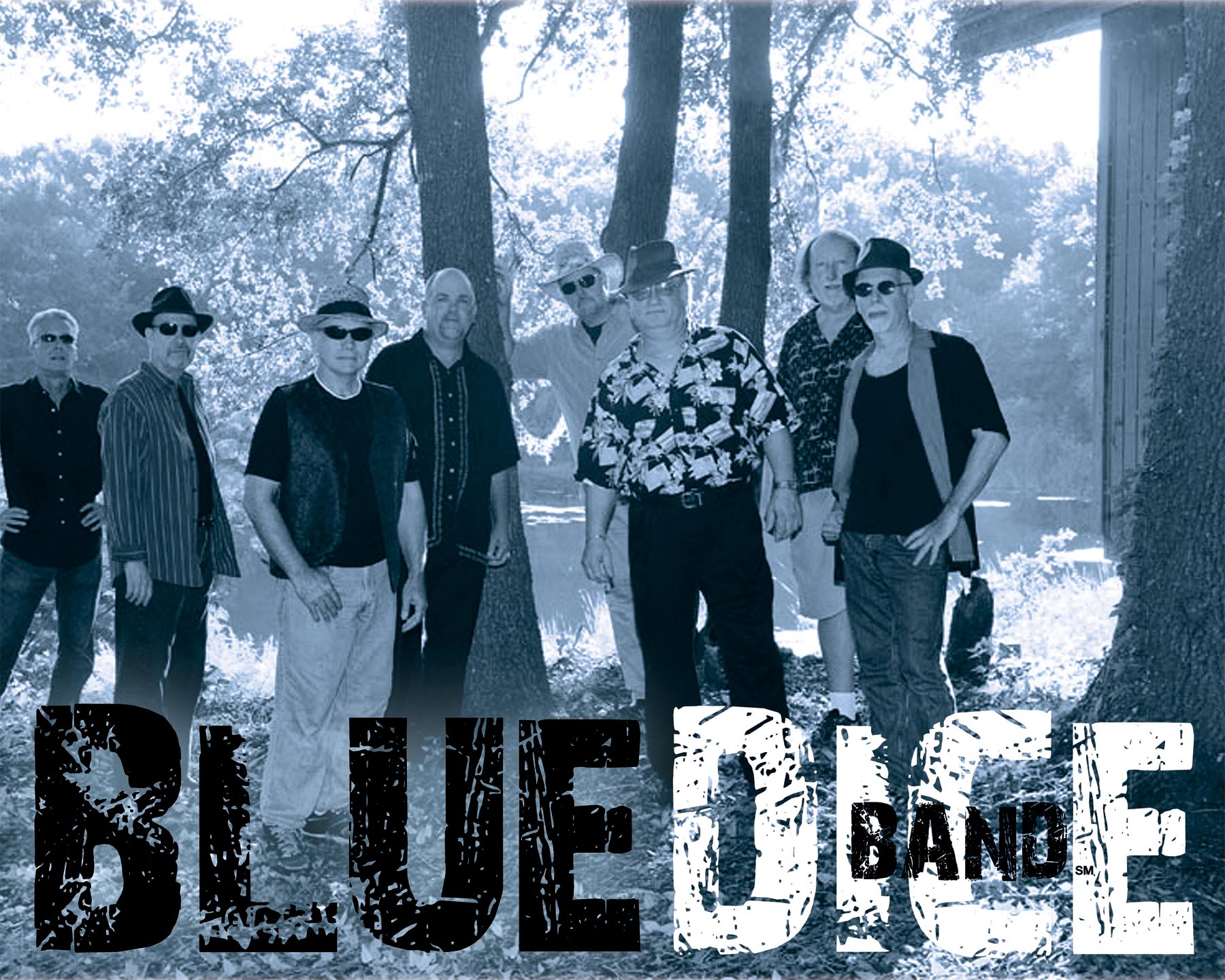 Blue Dice Band